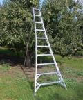 Rental store for LADDER, STEP ALUMINUM 14 in Portland OR